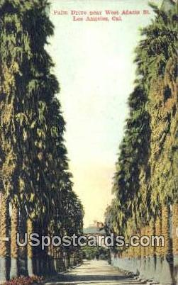 Palm Drive - Los Angeles, California CA Postcard