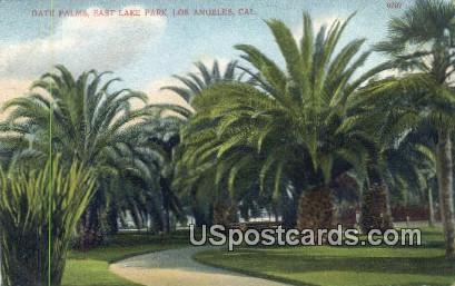 Date Palms, East Lake Park - Los Angeles, California CA Postcard