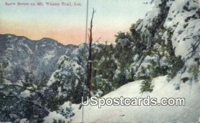 Trail - Mt. Wilson, California CA Postcard