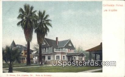 California Palms - Los Angeles Postcard