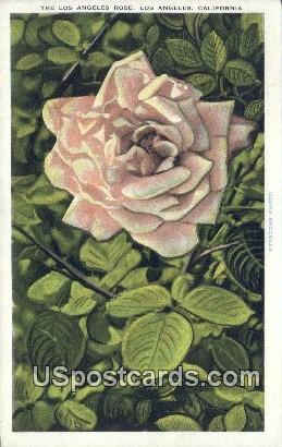 Los Angeles Rose - California CA Postcard