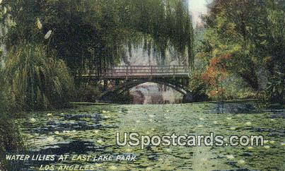 Water Lilies, East Lake Park - Los Angeles, California CA Postcard
