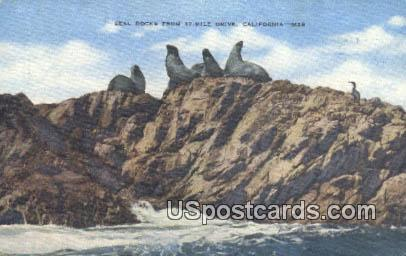 Seal Rock - Monterey Peninsula, California CA Postcard
