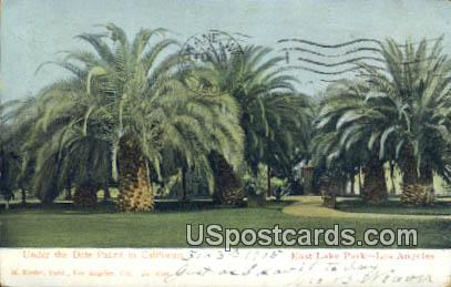 Under the Date Palms, East Lake Park - Los Angeles, California CA Postcard