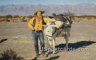 Pals - Death Valley, California CA Postcard