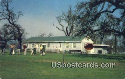 Swenson Park - Stockton, California CA Postcard