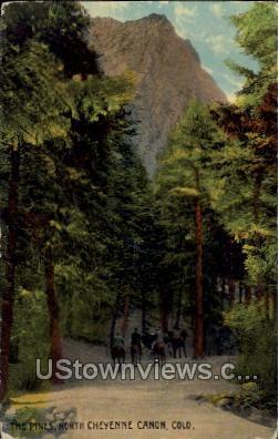 The Pines  - Cheyenne, Colorado CO Postcard
