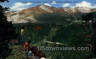 Pikes Peak National Forest - Colorado Springs Postcards, Colorado CO Postcard