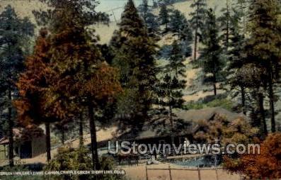 Bruin Inn  - Cripple Creek, Colorado CO Postcard