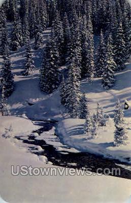 Bear Creek  - Denver, Colorado CO Postcard