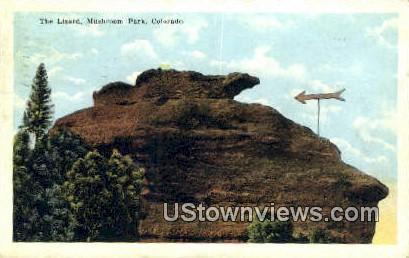 The Lizard - Mushroom Park, Colorado CO Postcard