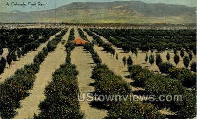 A Colorado Fruit Ranch - Misc Postcard