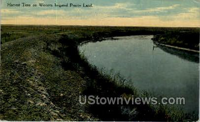 Harvest Time on Western Irrigated Prarie Land - Misc, Colorado CO Postcard