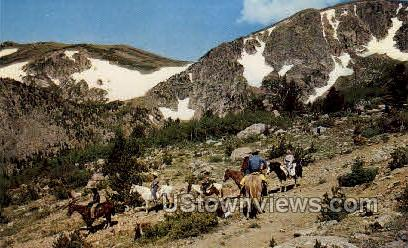 Horseback in the Rockies - Misc, Colorado CO Postcard