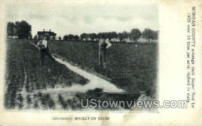 Colorado Irrigation - Misc Postcard