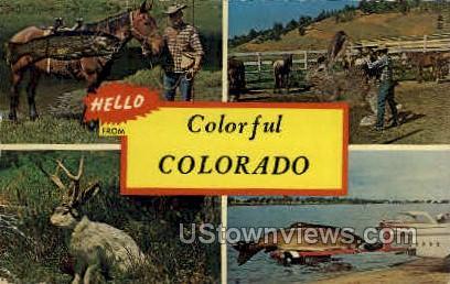 Hello From - Misc, Colorado CO Postcard