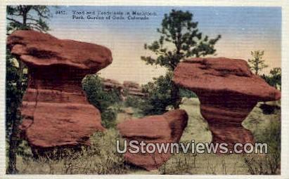 Toad & Toadstools, Mushroom Park - Garden of the Gods, Colorado CO Postcard