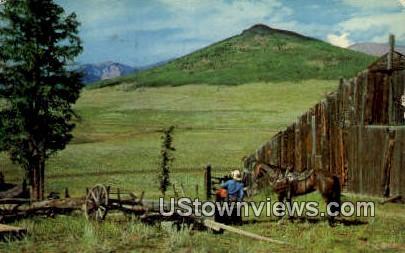 Cowboy - Canon City, Colorado CO Postcard