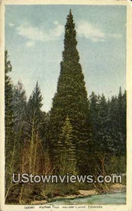 Boulder Canon, CO     ;     Boulder Canon, Colorado Postcard