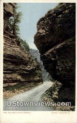 Williams Canon, CO     ;     Williams Canon, Colorado Postcard