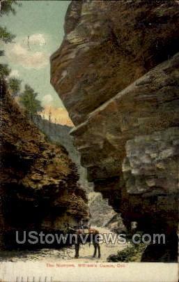 The Narrows, William Canon - Williams Canon, Colorado CO Postcard