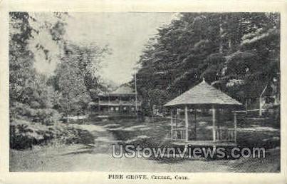 Pine Grove - Canaan, Connecticut CT Postcard