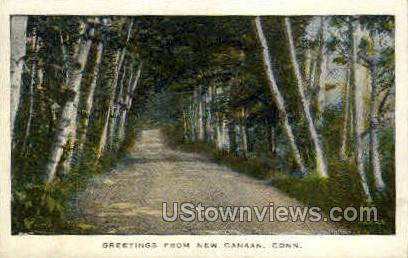 Greetings From - Canaan, Connecticut CT Postcard