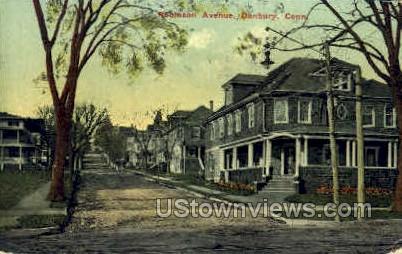 Robinson Ave. - Danbury, Connecticut CT Postcard