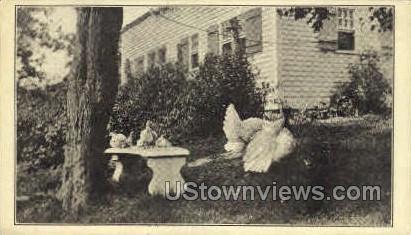 The White Turkey - Danbury, Connecticut CT Postcard
