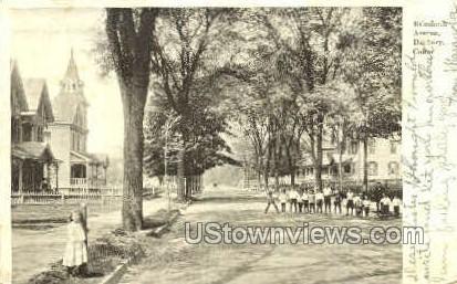 Balmfourth Ave. - Danbury, Connecticut CT Postcard