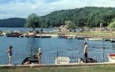 Town Park - Danbury, Connecticut CT Postcard