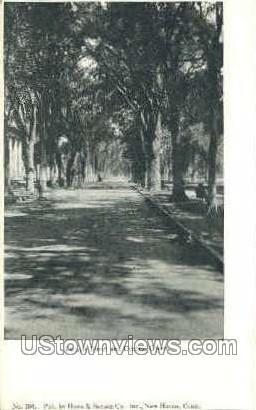Temple St. & Central Green - Danbury, Connecticut CT Postcard