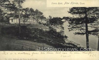Savin Rock - New Haven, Connecticut CT Postcard