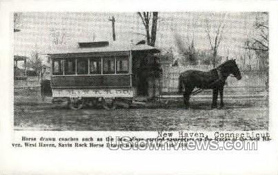 Horse Drawn Coach - New Haven, Connecticut CT Postcard
