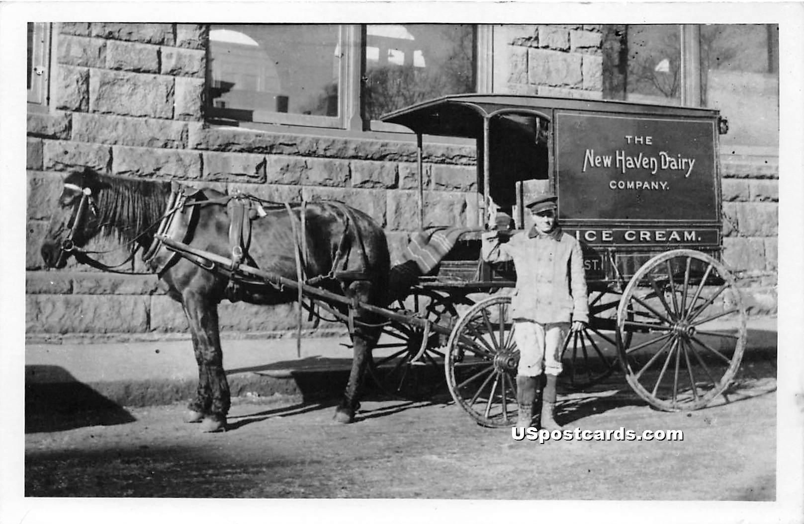 New Haven Dairy Company Ice Cream - Connecticut CT Postcard