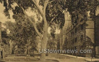 Yale, Connecticut Hall - New Haven Postcard