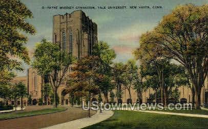 Yale, Gymnasium - New Haven, Connecticut CT Postcard