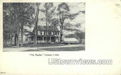 The Maples  - Canaan, Connecticut CT Postcard