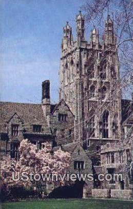 Wrexham Tower, Saybrook College - New Haven, Connecticut CT Postcard