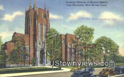 Peabody Museum, Yale University - New Haven, Connecticut CT Postcard