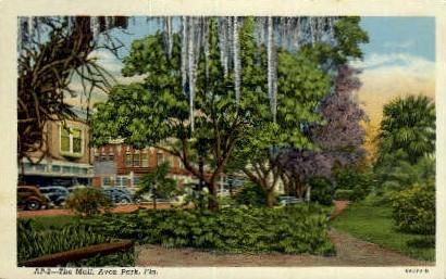 The Mall - Avon Park, Florida FL Postcard