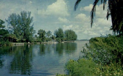 Riverview Boulevard - Bradenton, Florida FL Postcard