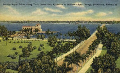 Stately Royal Palms - Bradenton, Florida FL Postcard