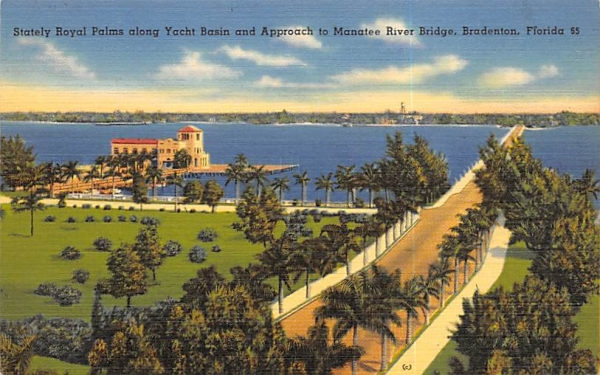 Stately Royal Palms along Yacht Basin Bradenton, Florida Postcard