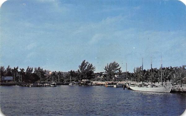 Yacht Basin Bradenton, Florida Postcard
