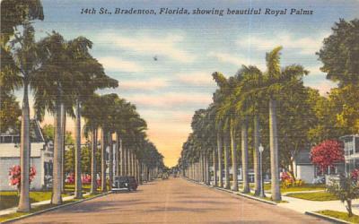 14th St., showing beautiful Royal Palms Bradenton, Florida Postcard