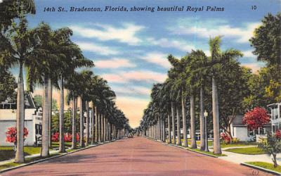 14th St., showing beautiful Royal Palms Bradenton, Florida Postcard