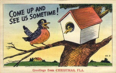 Birds - Christmas, Florida FL Postcard