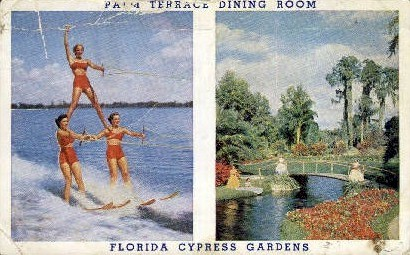 Palm Terrace Dining Room - Cypress Gardens, Florida FL Postcard