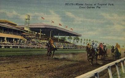 Winter Racing - Coral Gables, Florida FL Postcard